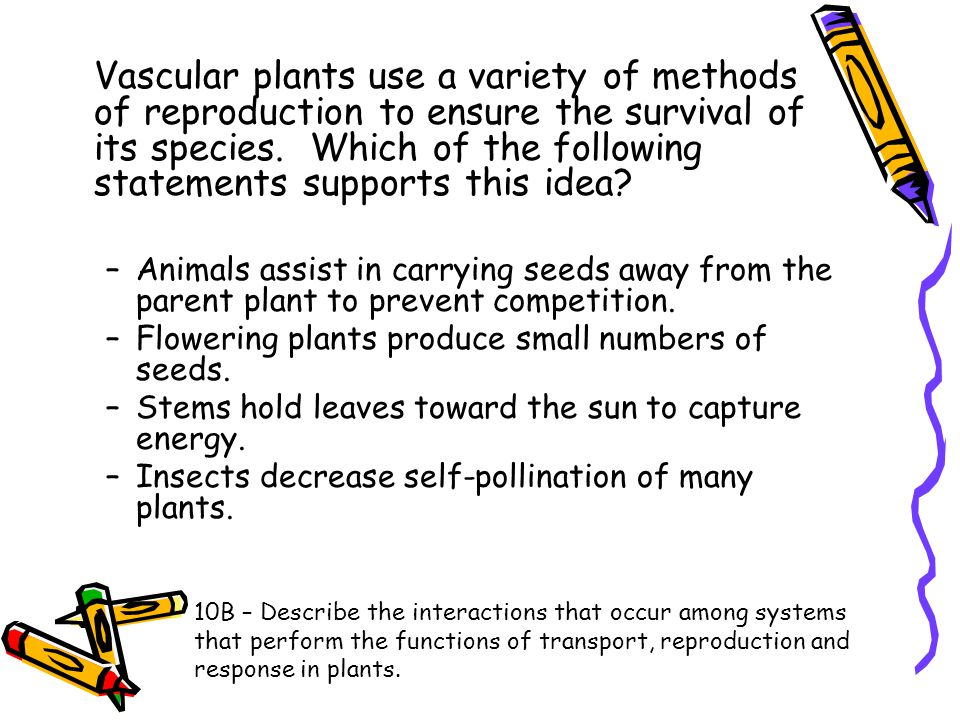 Vascular plants use a variety of methods of reproduction to ensure the survival of its species. Which of the following statements supports this idea?