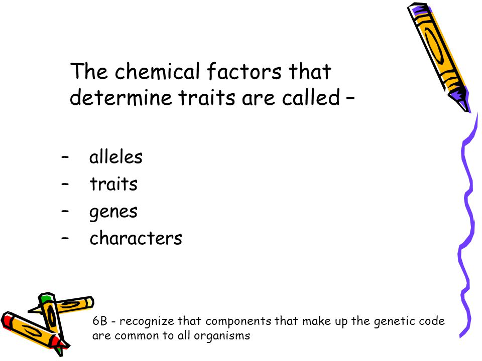 The chemical factors that determine traits are called – –alleles –traits –genes –characters 6B - recognize that components that make up the genetic co
