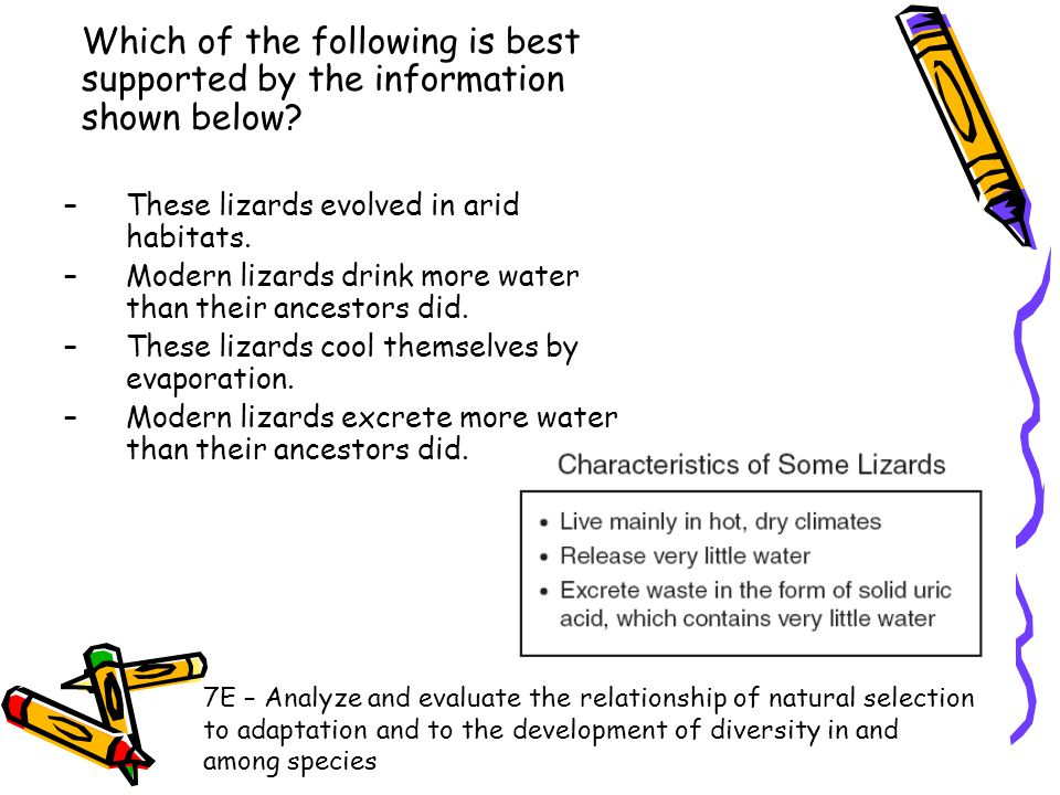 Which of the following is best supported by the information shown below? –These lizards evolved in arid habitats. –Modern lizards drink more water tha