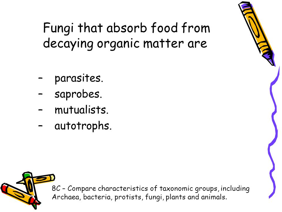 Fungi that absorb food from decaying organic matter are –parasites. –saprobes. –mutualists. –autotrophs. 8C – Compare characteristics of taxonomic gro