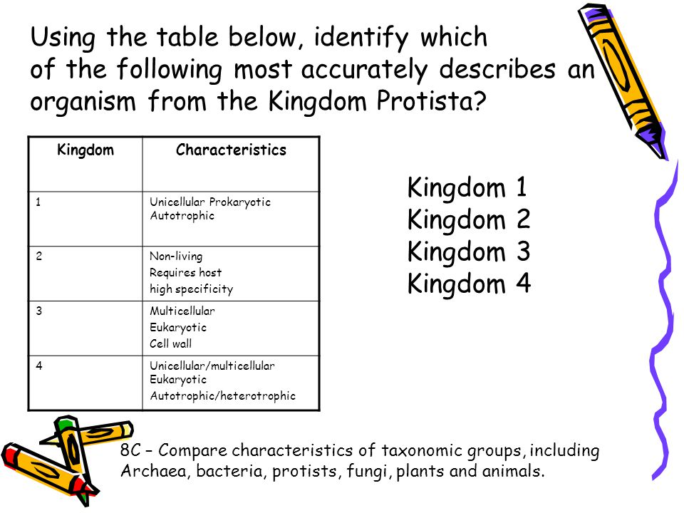 Using the table below, identify which of the following most accurately describes an organism from the Kingdom Protista? 8C – Compare characteristics o