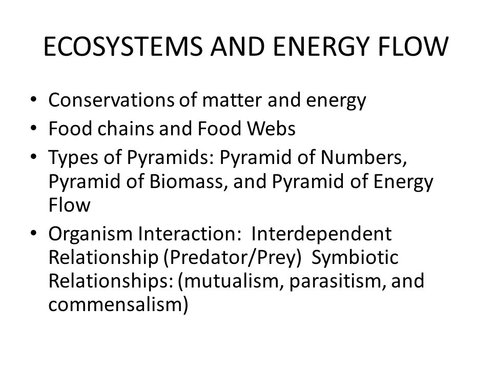 ECOSYSTEMS AND ENERGY FLOW Conservations of matter and energy Food chains and Food Webs Types of Pyramids: Pyramid of Numbers, Pyramid of Biomass, and