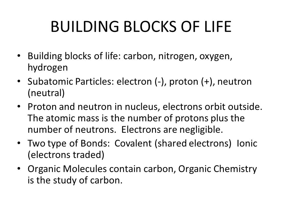 BUILDING BLOCKS OF LIFE Building blocks of life: carbon, nitrogen, oxygen, hydrogen Subatomic Particles: electron (-), proton (+), neutron (neutral) P