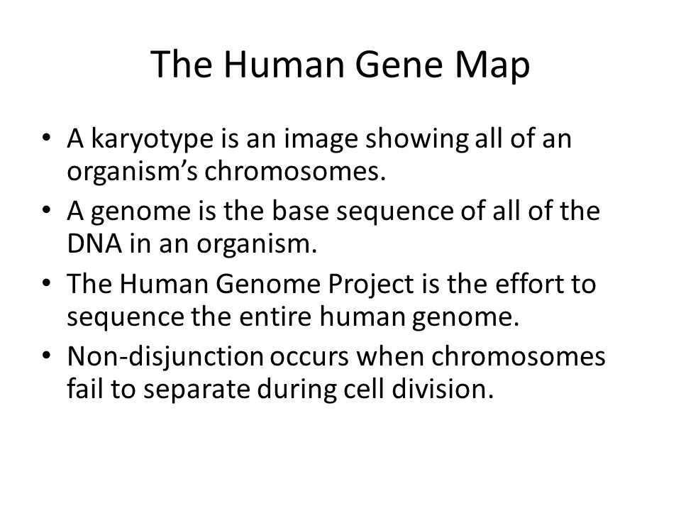The Human Gene Map A karyotype is an image showing all of an organism's chromosomes. A genome is the base sequence of all of the DNA in an organism. T