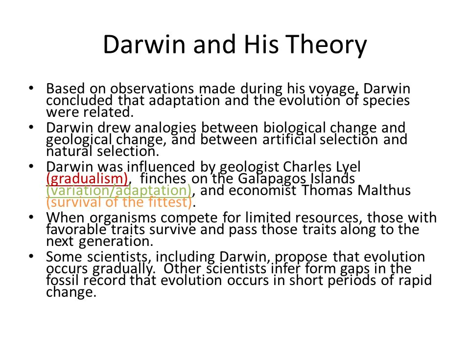 Darwin and His Theory Based on observations made during his voyage, Darwin concluded that adaptation and the evolution of species were related. Darwin
