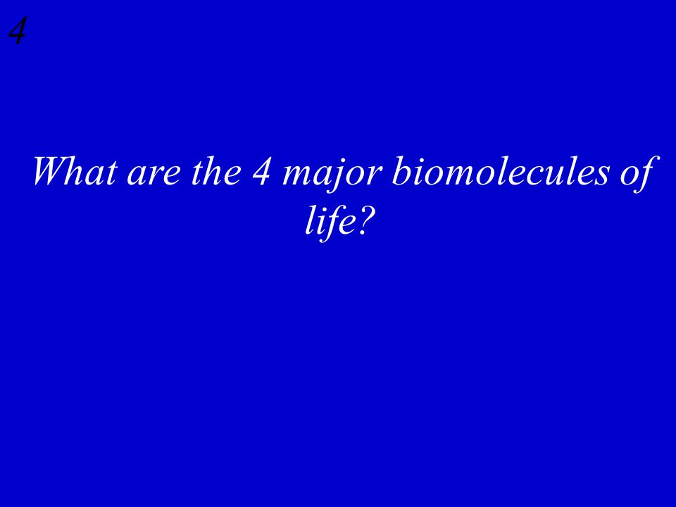4 What are the 4 major biomolecules of life?