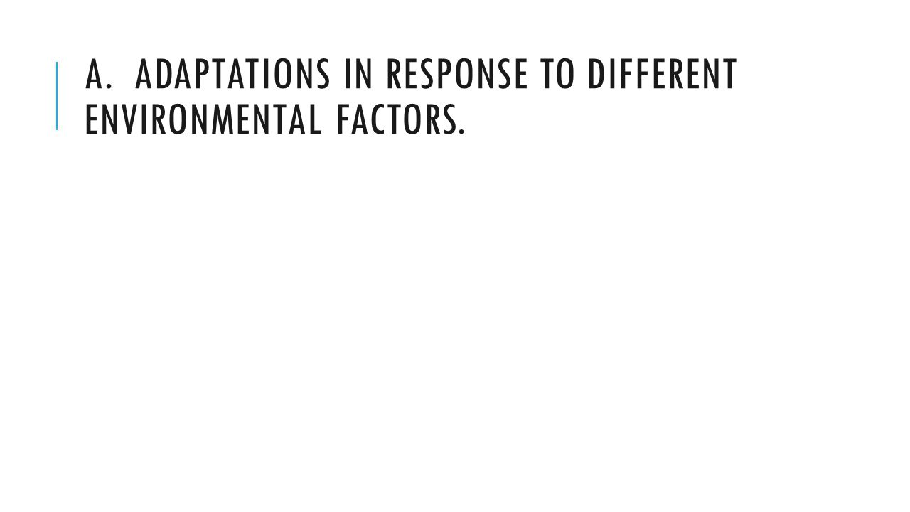 A. ADAPTATIONS IN RESPONSE TO DIFFERENT ENVIRONMENTAL FACTORS.