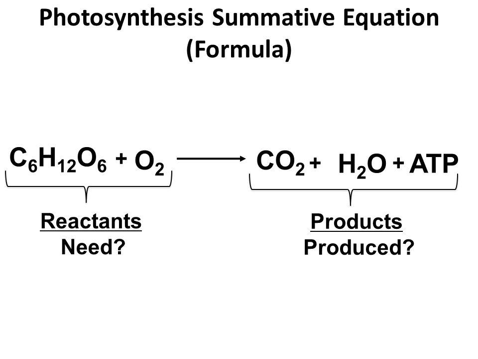 Photosynthesis Summative Equation (Formula) CO 2 H2OH2O + C 6 H 12 O 6 + O2O2 Reactants Need.