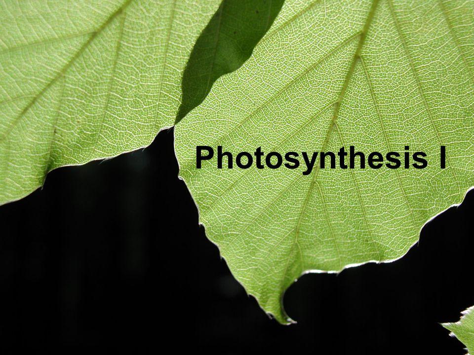 Photosynthesis Photosynthesis I