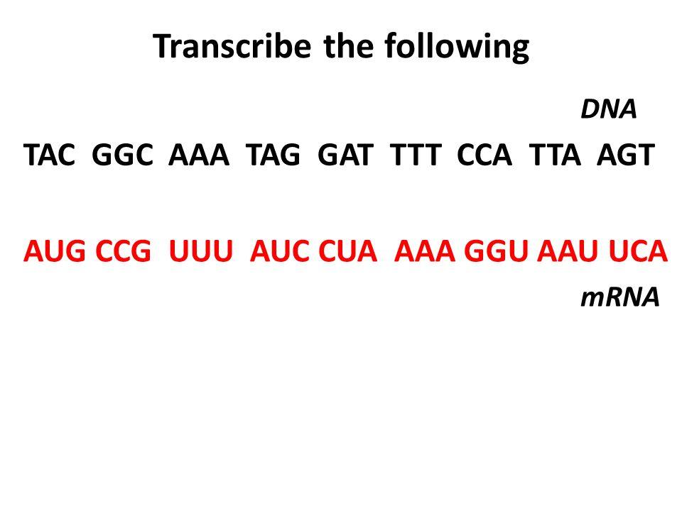 Transcribe the following TAC GGC AAA TAG GAT TTT CCA TTA AGT DNA AUG CCG UUU AUC CUA AAA GGU AAU UCA mRNA