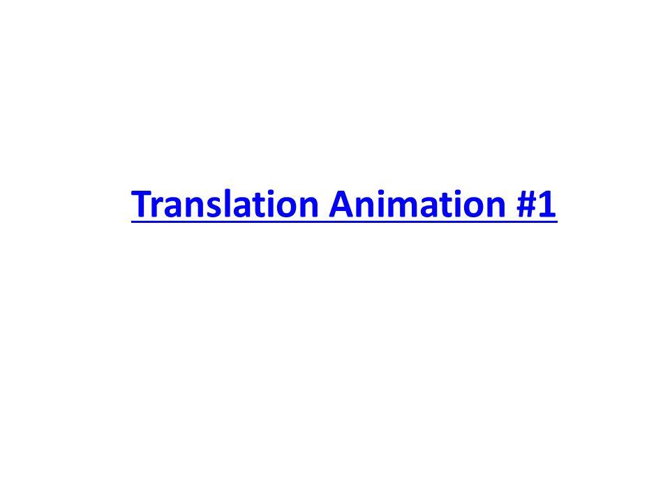 Translation Animation #1
