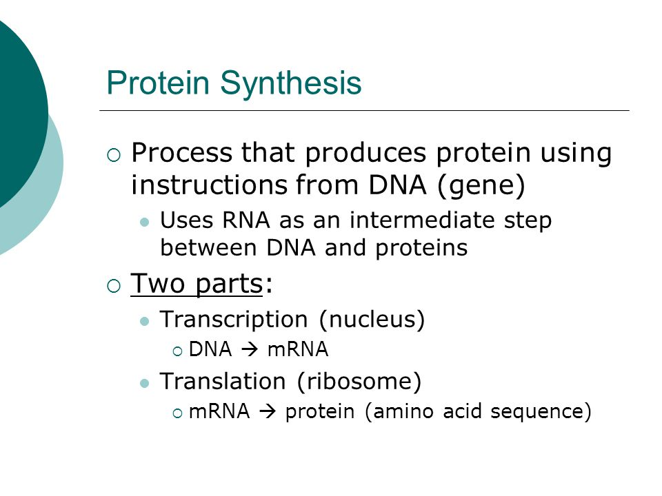 Protein Synthesis  Process that produces protein using instructions from DNA (gene) Uses RNA as an intermediate step between DNA and proteins  Two p
