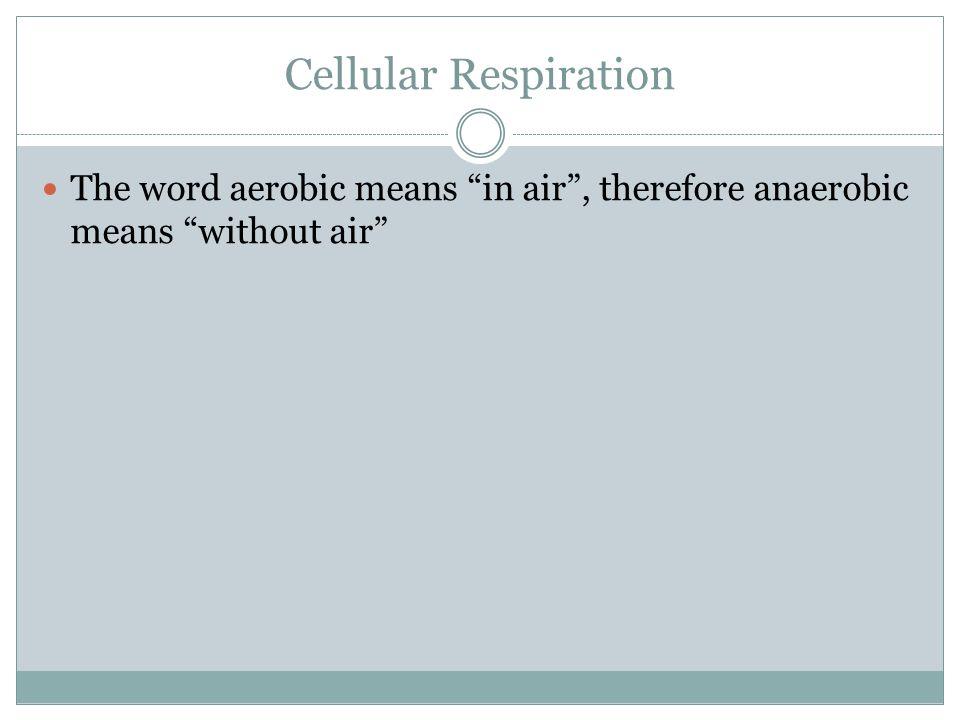 Cellular Respiration Oxygen=aerobic respiration=Glycolysis + Kreb's cycle + Electron Transport Chain= more ATP No Oxygen= anaerobic respiration = Glycolysis + Fermentation = less ATP