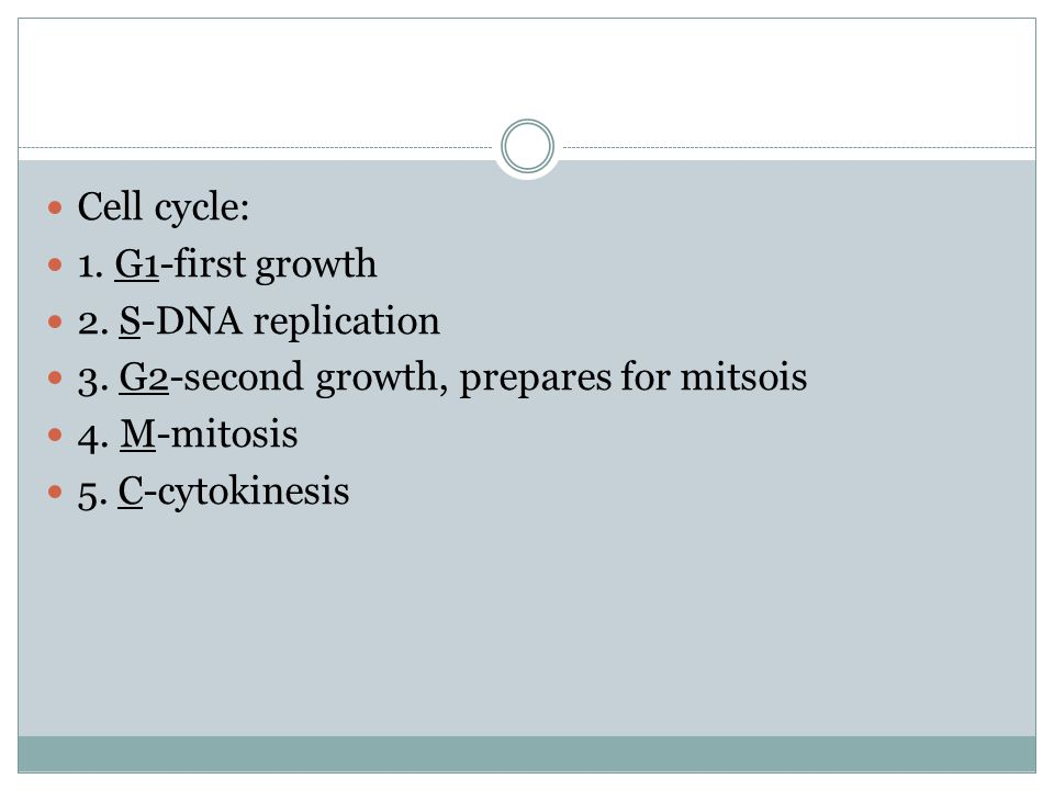 The cell cycle is the sequence of stages through which a cell passes between one cell division to the next.