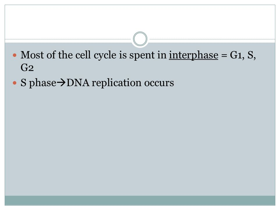 3. Mitosis generates  A. daughter cells identical to the mother cell  B.