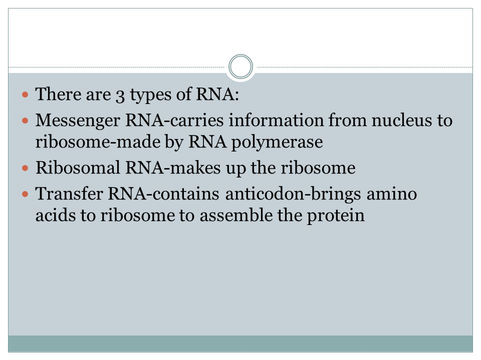 RNA is ribonucleic acid. RNA is used to translate the code from the DNA molecule into protein.