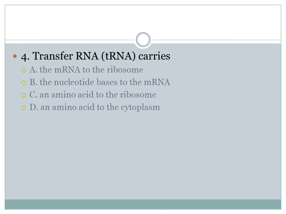 3. Proteins are made up of polypeptide chains. Polypeptide chains are composed of A. mRNA B. rRNA C. tRNA D. Amino acids