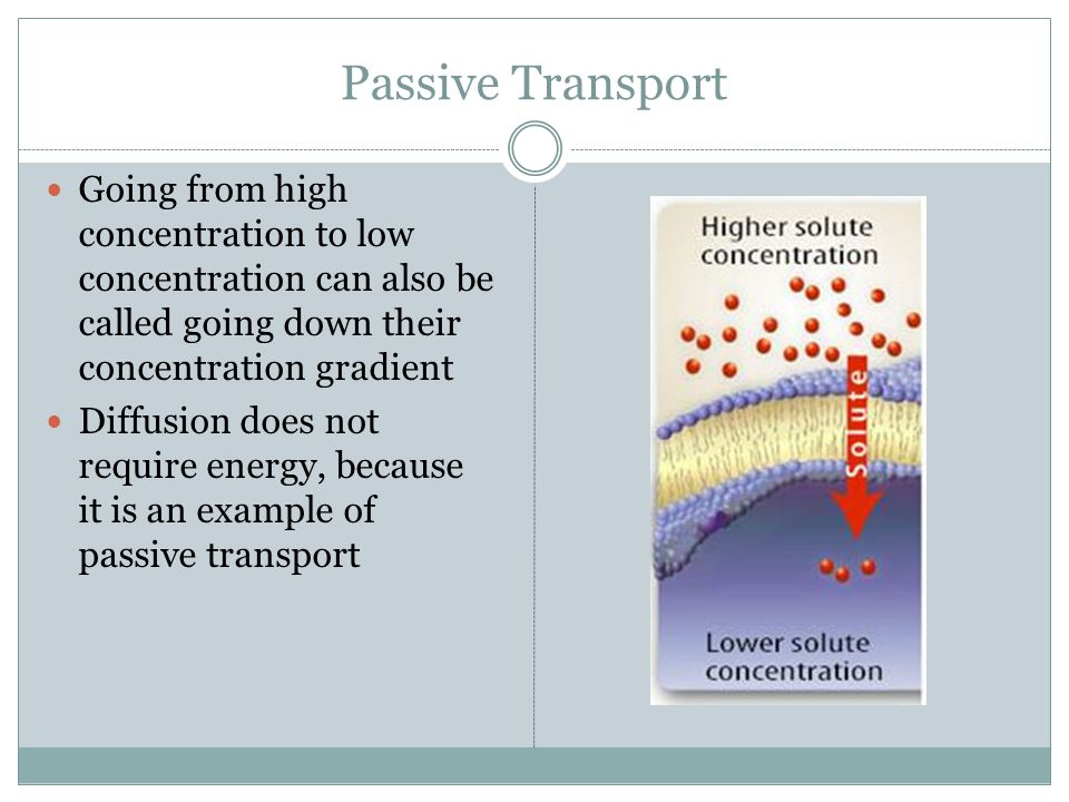 Passive Transport Diffusion is the process by which a substance moves from an area of high concentration to an area of low concentration (Concentratio