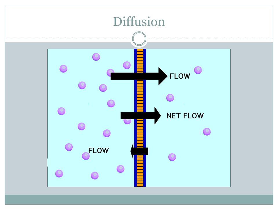 Passive Transport Going from high concentration to low concentration can also be called going down their concentration gradient Diffusion does not require energy, because it is an example of passive transport