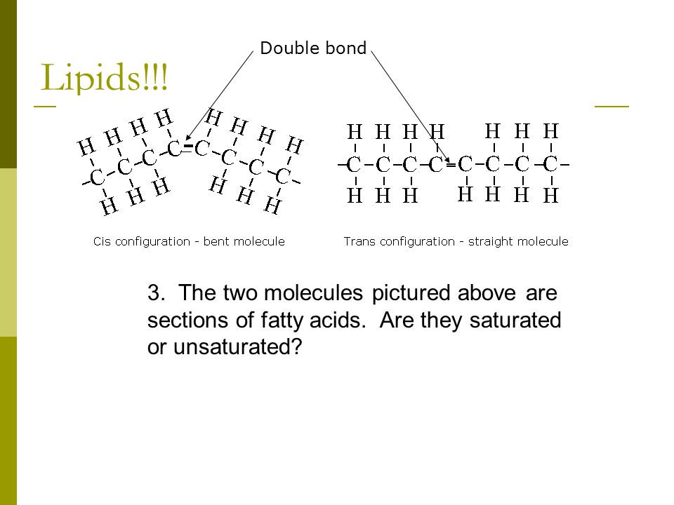 Lipids!!. 3. The two molecules pictured above are sections of fatty acids.