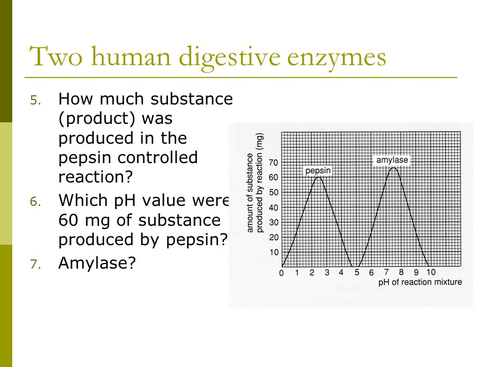 Two human digestive enzymes 5. How much substance (product) was produced in the pepsin controlled reaction? 6. Which pH value were 60 mg of substance
