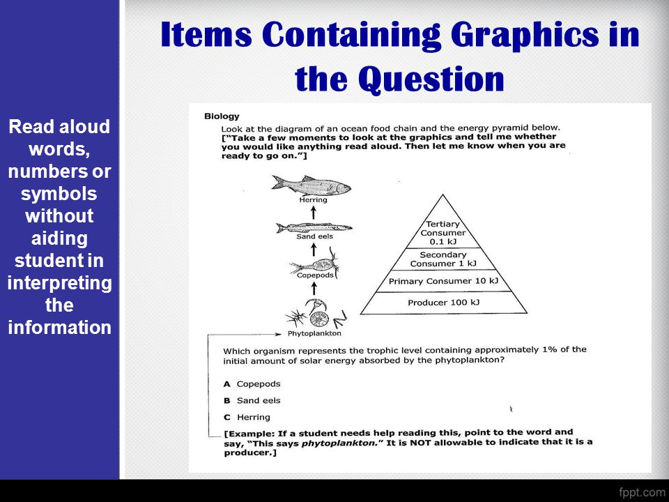 Items Containing Graphics in the Question Read aloud words, numbers or symbols without aiding student in interpreting the information