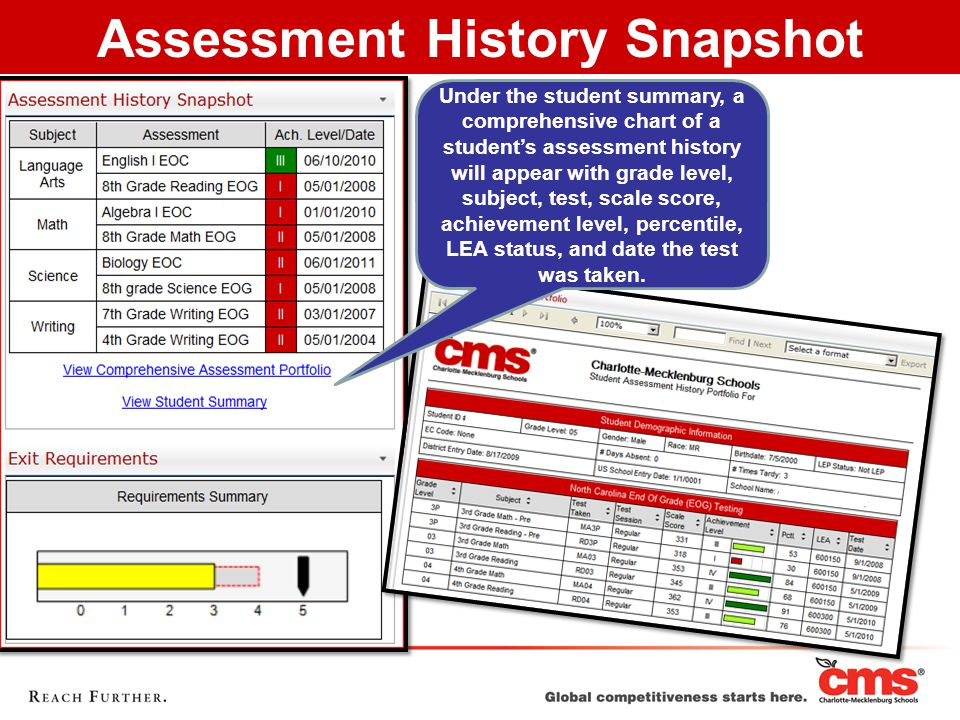 Under the student summary, a comprehensive chart of a student's assessment history will appear with grade level, subject, test, scale score, achievement level, percentile, LEA status, and date the test was taken.