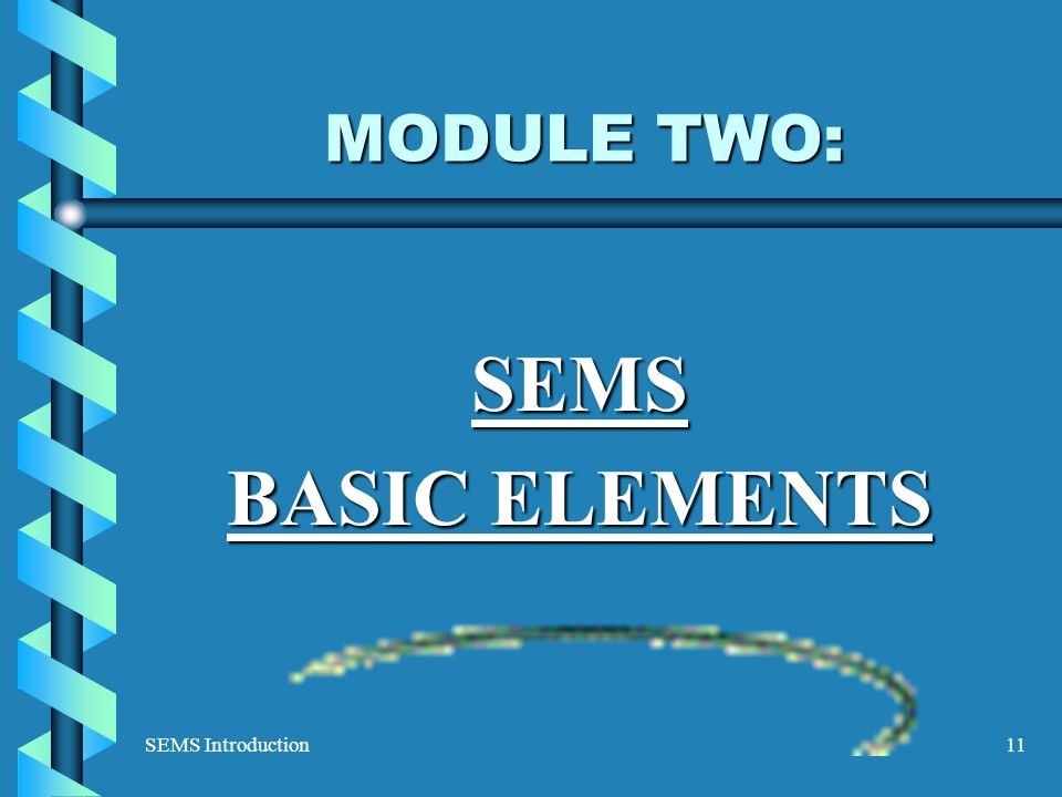 SEMS Introduction11 MODULE TWO: SEMS BASIC ELEMENTS