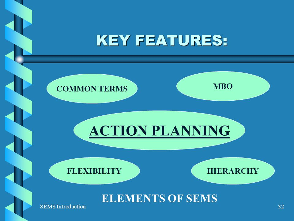 SEMS Introduction32 KEY FEATURES: ELEMENTS OF SEMS MBO ACTION PLANNING FLEXIBILITYHIERARCHY COMMON TERMS