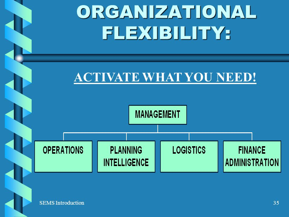 SEMS Introduction35 ORGANIZATIONAL FLEXIBILITY: ACTIVATE WHAT YOU NEED!