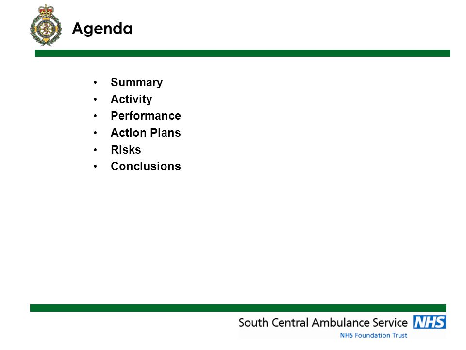 Agenda Summary Activity Performance Action Plans Risks Conclusions