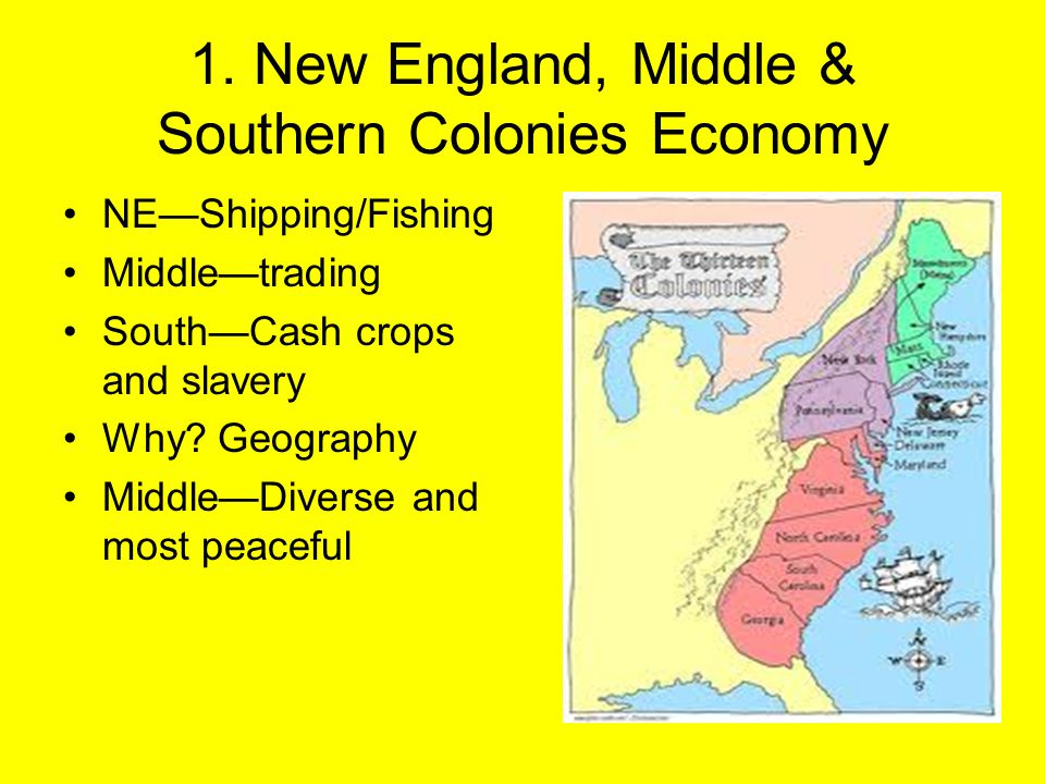 1. New England, Middle & Southern Colonies Economy NE—Shipping/Fishing Middle—trading South—Cash crops and slavery Why? Geography Middle—Diverse and m
