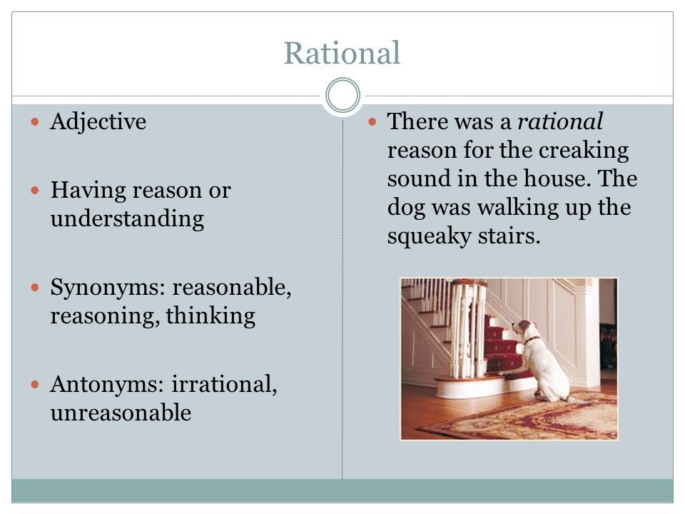 Rational Adjective Having reason or understanding Synonyms: reasonable, reasoning, thinking Antonyms: irrational, unreasonable There was a rational reason for the creaking sound in the house.