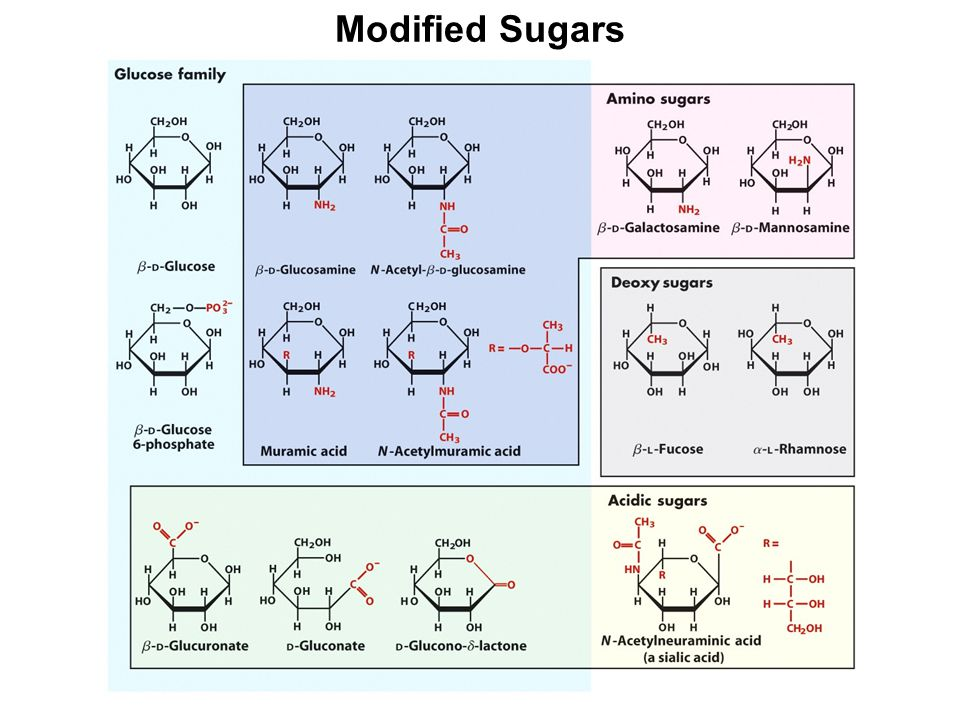 Modified Sugars