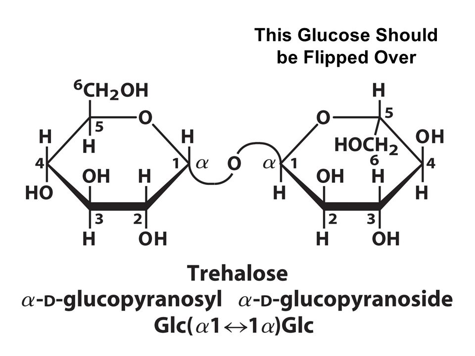 This Glucose Should be Flipped Over