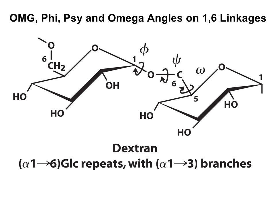OMG, Phi, Psy and Omega Angles on 1,6 Linkages