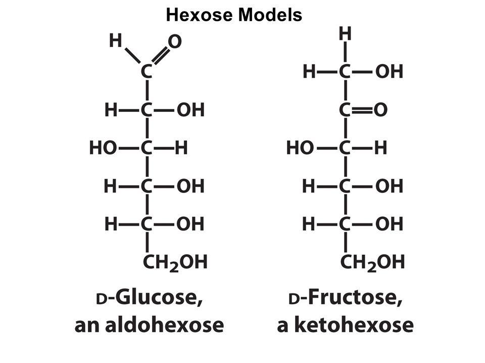 Pentose Models