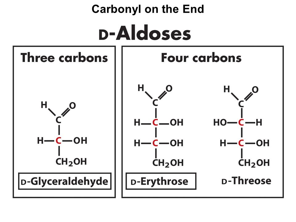 Amylose Helix EOC Problem 18 compares the lengths of cellulose and amylose: both polymers of glucose, but different.