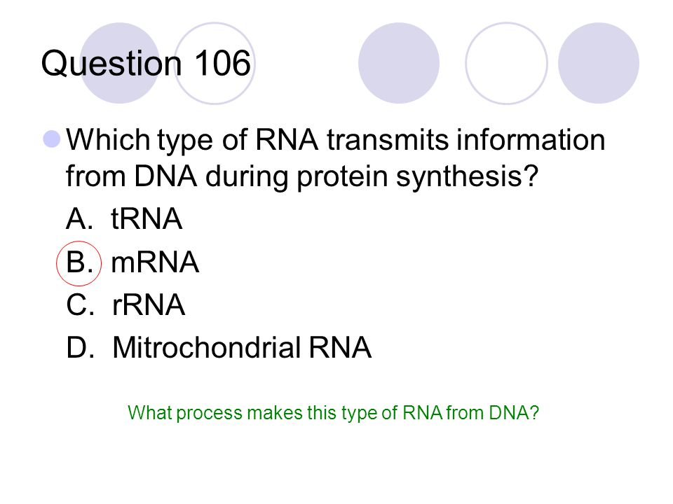 Question 106 Which type of RNA transmits information from DNA during protein synthesis? A. tRNA B. mRNA C. rRNA D. Mitrochondrial RNA What process mak
