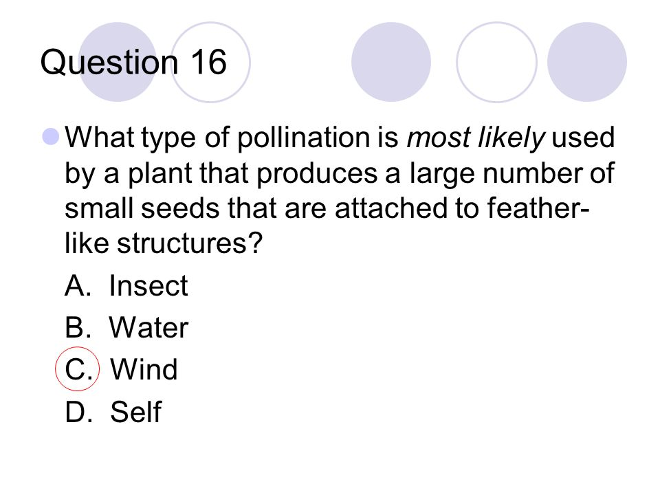 Question 16 What type of pollination is most likely used by a plant that produces a large number of small seeds that are attached to feather- like str