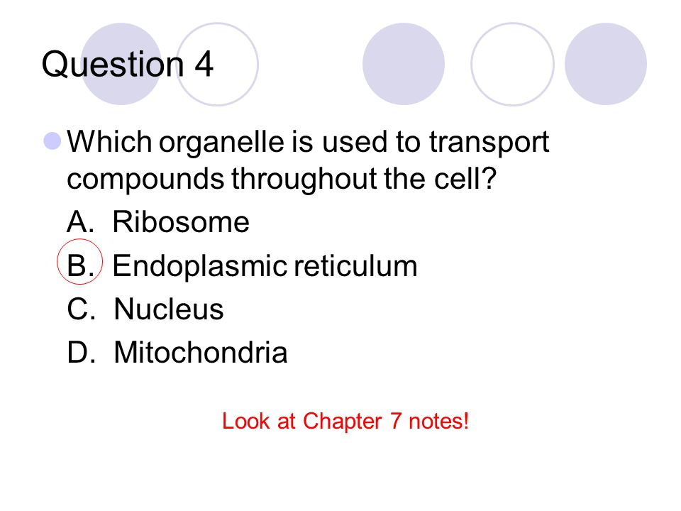 Question 95 A cell is taken from an environment that has a high salt concentration and is placed into an environment that does not contain any salt.