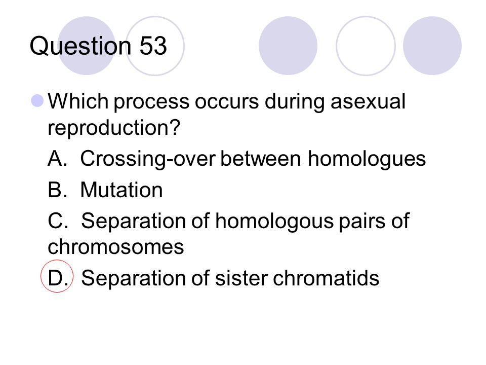 Question 53 Which process occurs during asexual reproduction? A. Crossing-over between homologues B. Mutation C. Separation of homologous pairs of chr