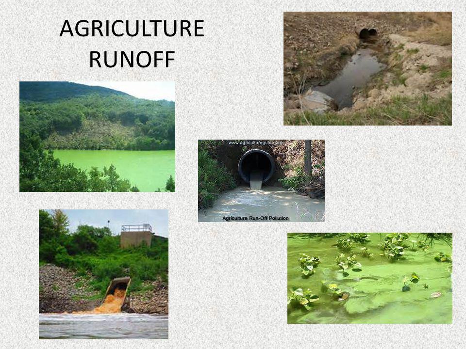 AGRICULTURE RUNOFF