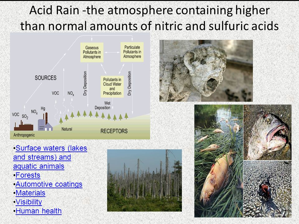 Acid Rain -the atmosphere containing higher than normal amounts of nitric and sulfuric acids Surface waters (lakes and streams) and aquatic animalsSurface waters (lakes and streams) and aquatic animals Forests Automotive coatings Materials Visibility Human health