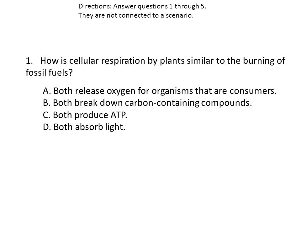 1. How is cellular respiration by plants similar to the burning of fossil fuels.