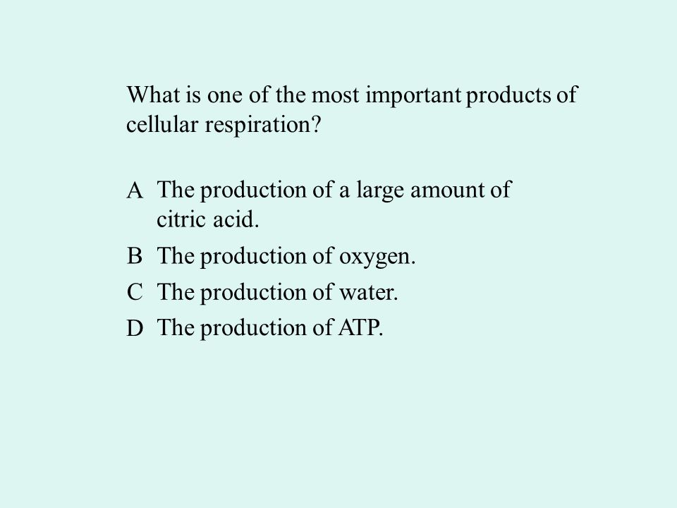 What is one of the most important products of cellular respiration.