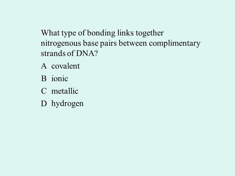 What type of bonding links together nitrogenous base pairs between complimentary strands of DNA.