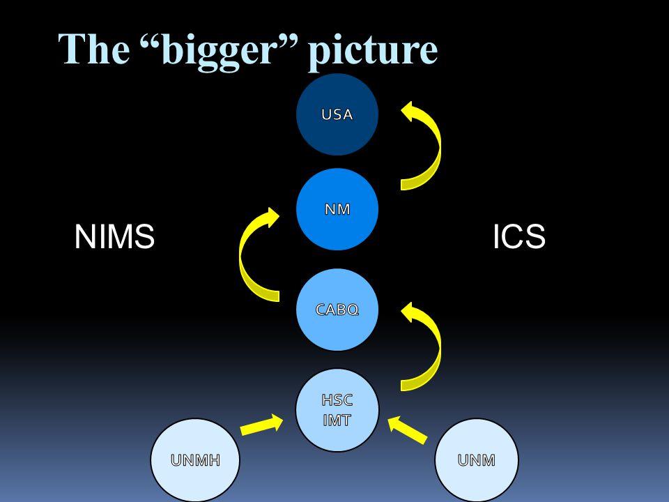 """The """"bigger"""" picture NIMSICS"""