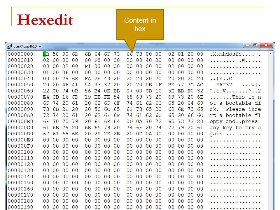 Hexedit 19 Content in hex
