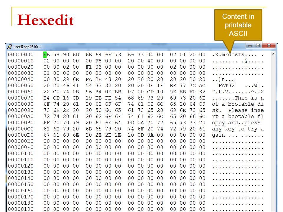 Hexedit 20 Content in printable ASCII